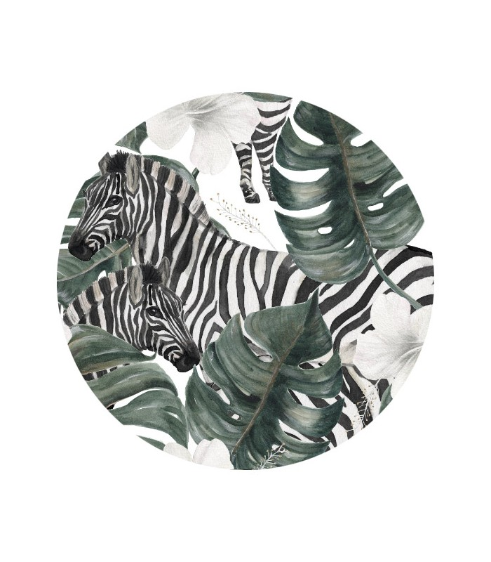 Front view Zebras